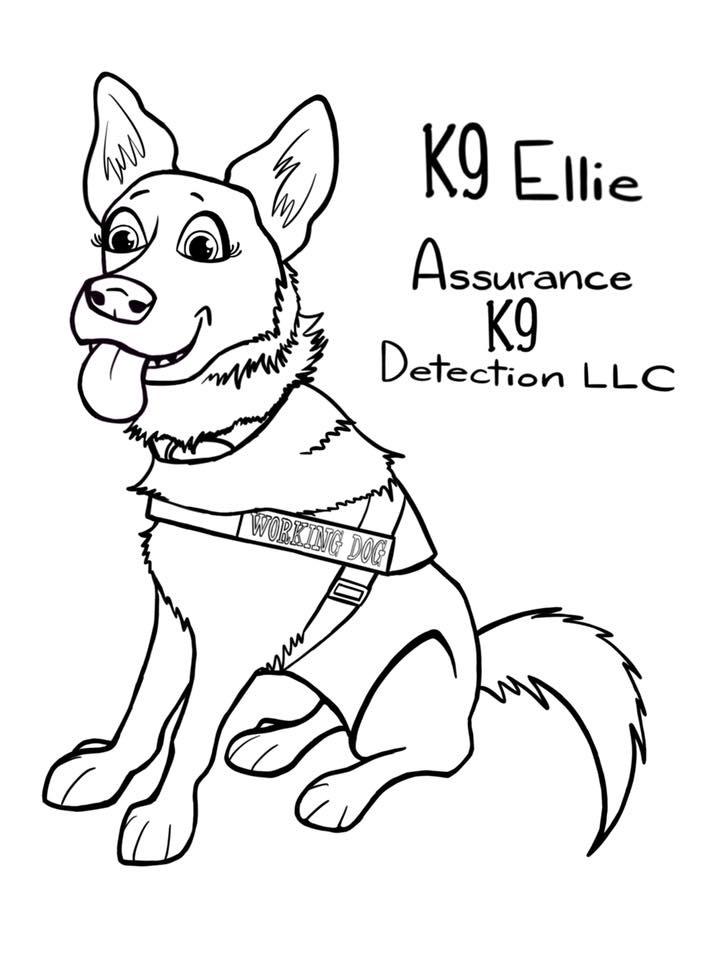 K9 Detection Log